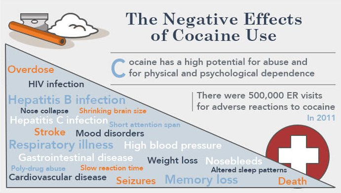 the short and long term effects of cocaine abuse (graph inset) the time courses of cocaine-induced buildup of δfosb and cocaine-related structural changes (dendrite sprouting) suggest that these neurobiological effects may underlie some of the drug's short-term, medium-term, and long-term behavioral effects.