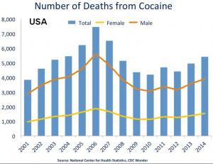 cocaine stats