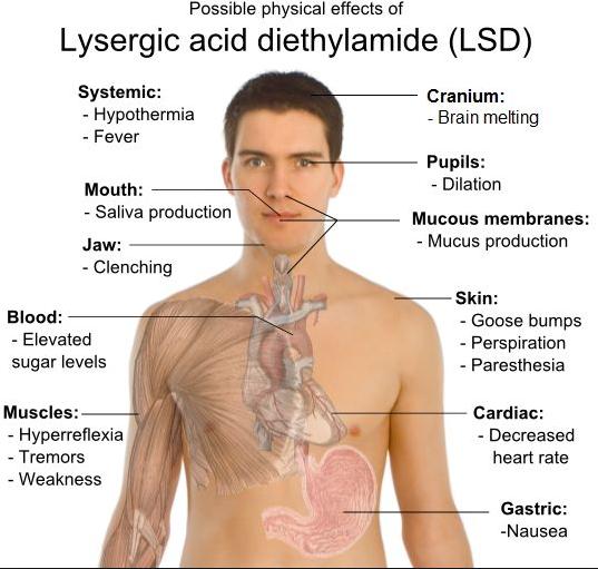LSD Street Names - How to Identify LSD (Lysergic acid
